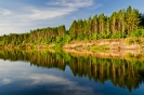 Левый берег реки  Самара у с. Богатое