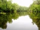 Природа Богатовского района