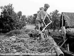 Тяжкий сельский труд